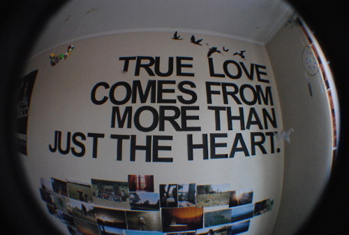 vio-vio-love-Favim.com-546259_large