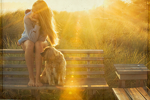 dog-girl-sun-Favim.com-201910_large