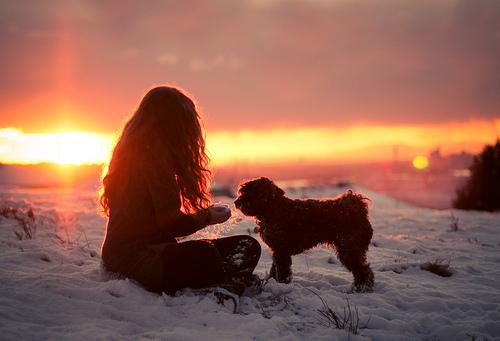 cold-cute-dog-friends-girl-favim-com-455410